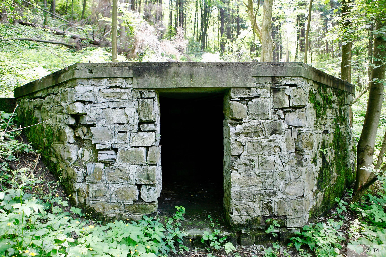 Air raid bunker Goleszów 2006 T4 6643