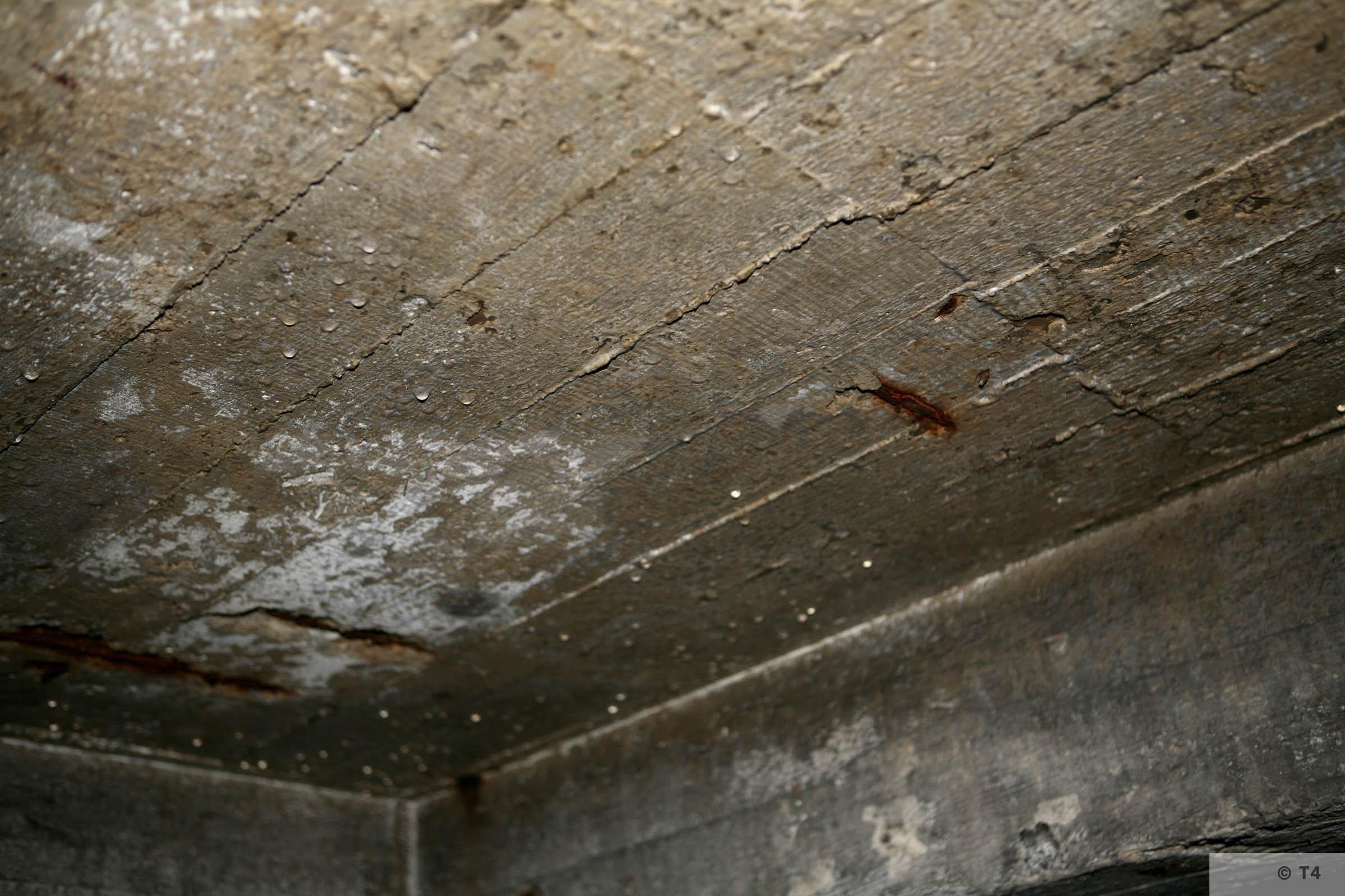 Air raid bunker roof. 2006 T4 3838
