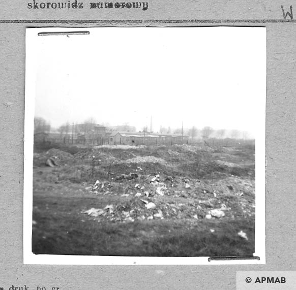 Area of the camp in the background steelworks Zgoda. 1959 APMAB 4407