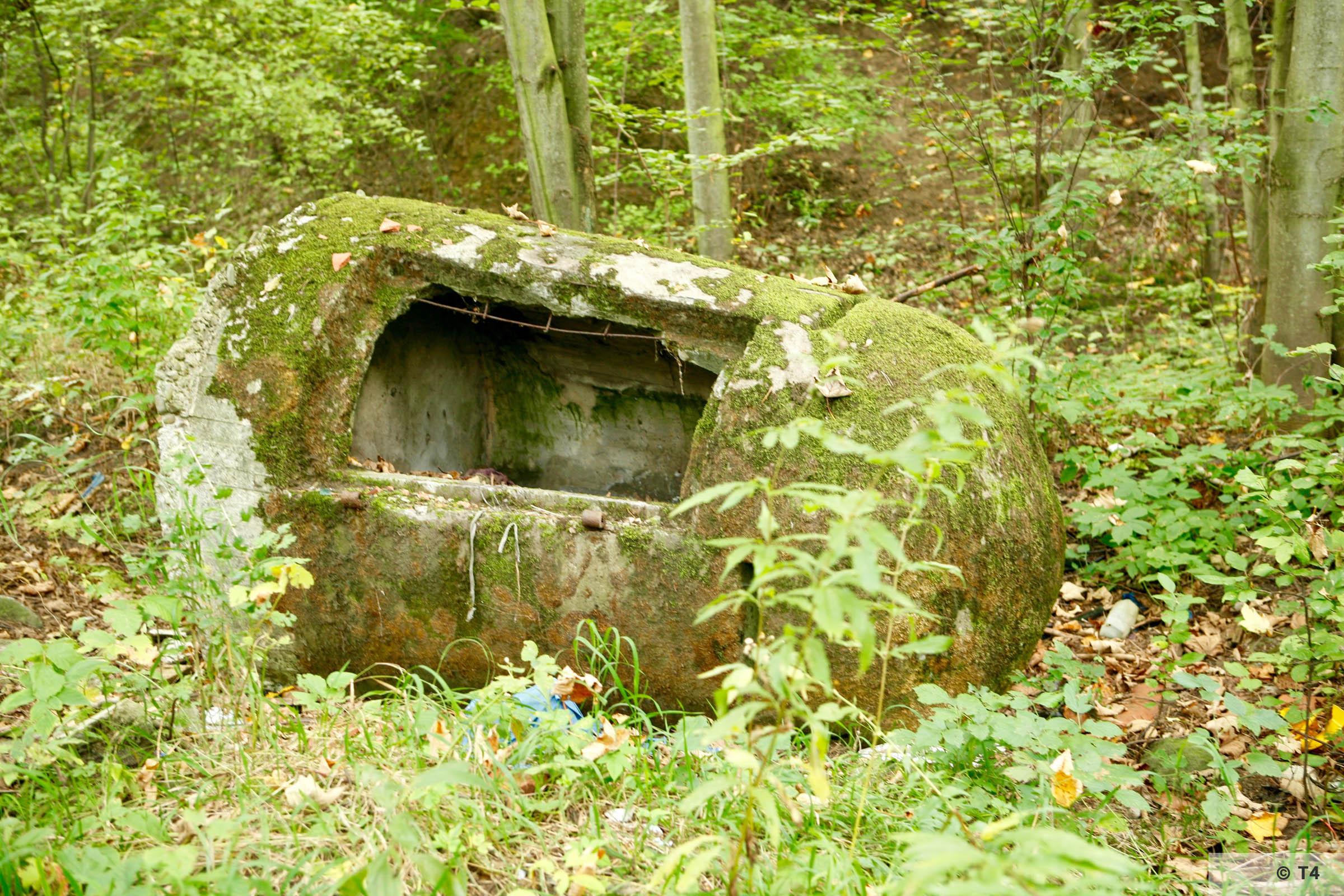 Concrete air raid shelter near the Bata factory. 2007 T4 1677