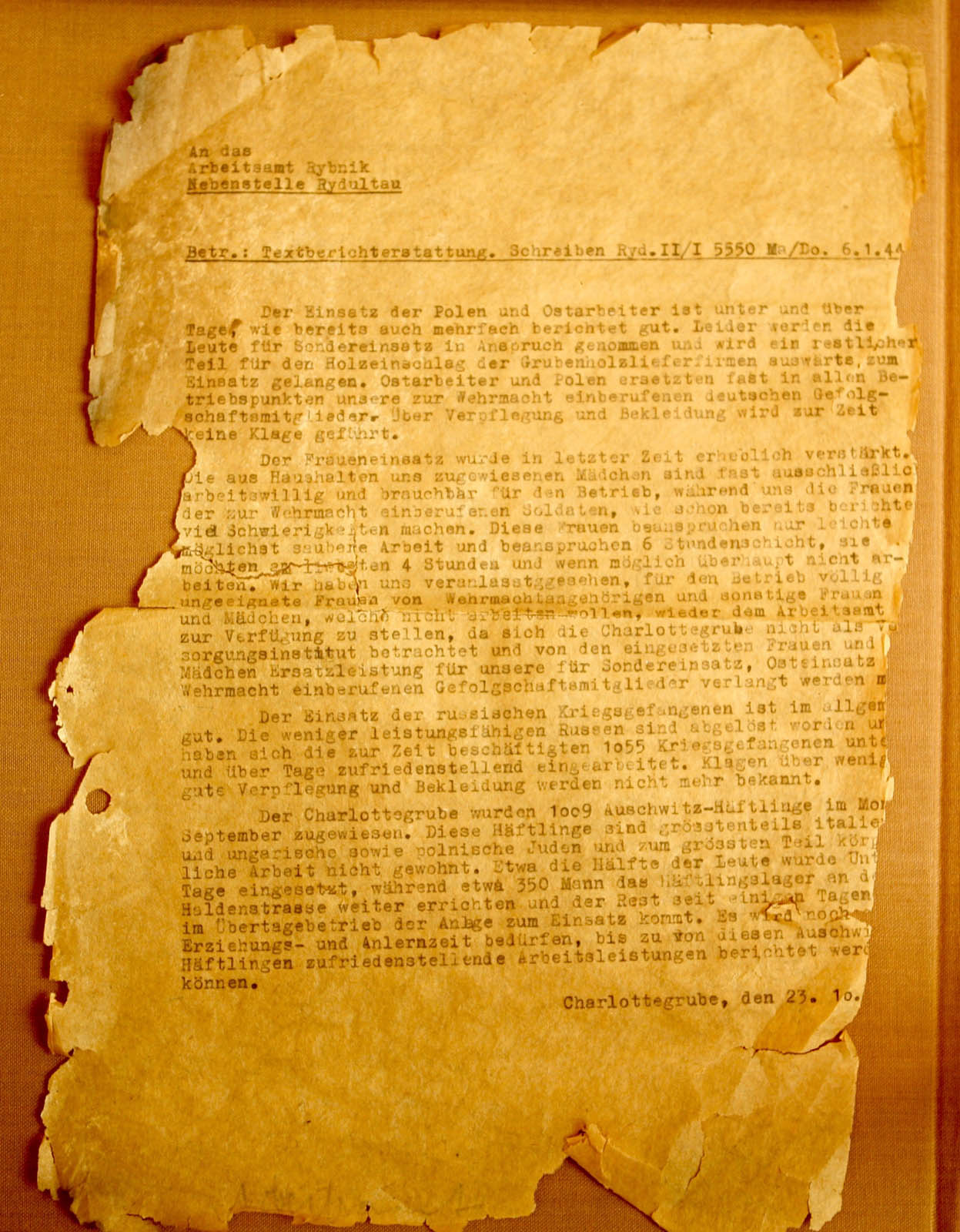 Document on the status of Poles, Ostarbeiter, Russian POWs and Auschwitz prisoners.