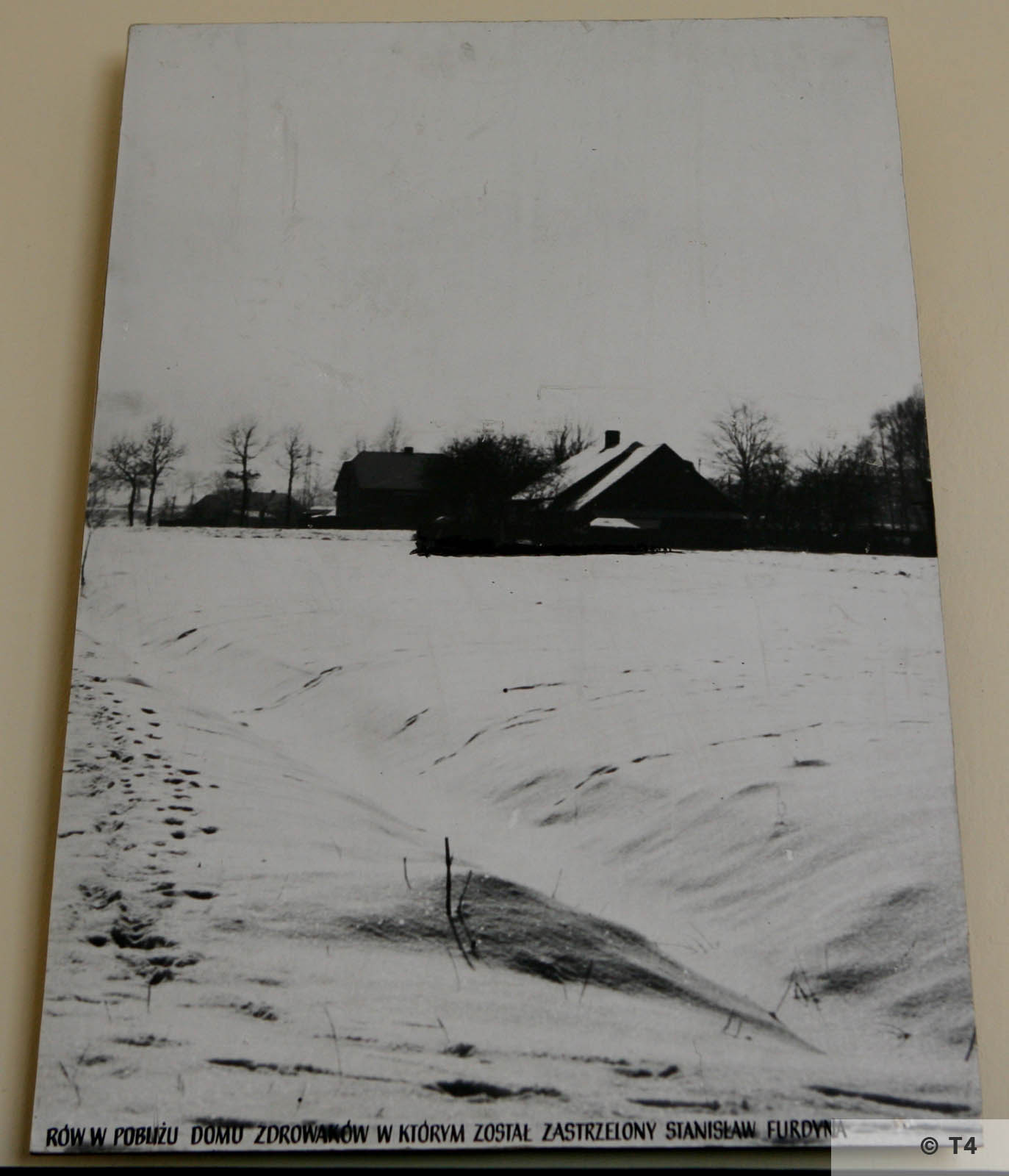 Exhibition in Budy School. 2006 T4 4924