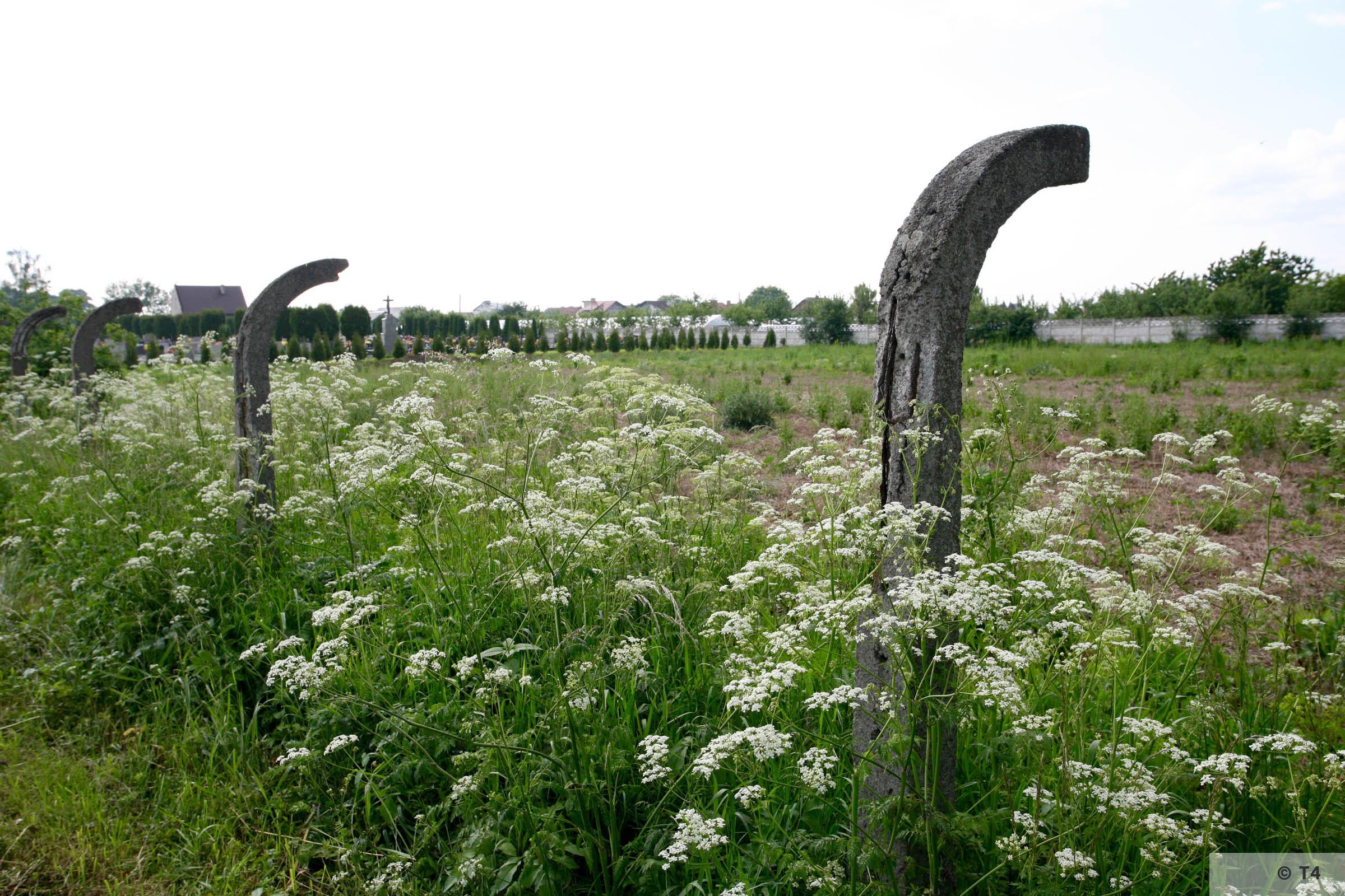 Fence posts surrounding field in Rajsko. 2006 T4 5038