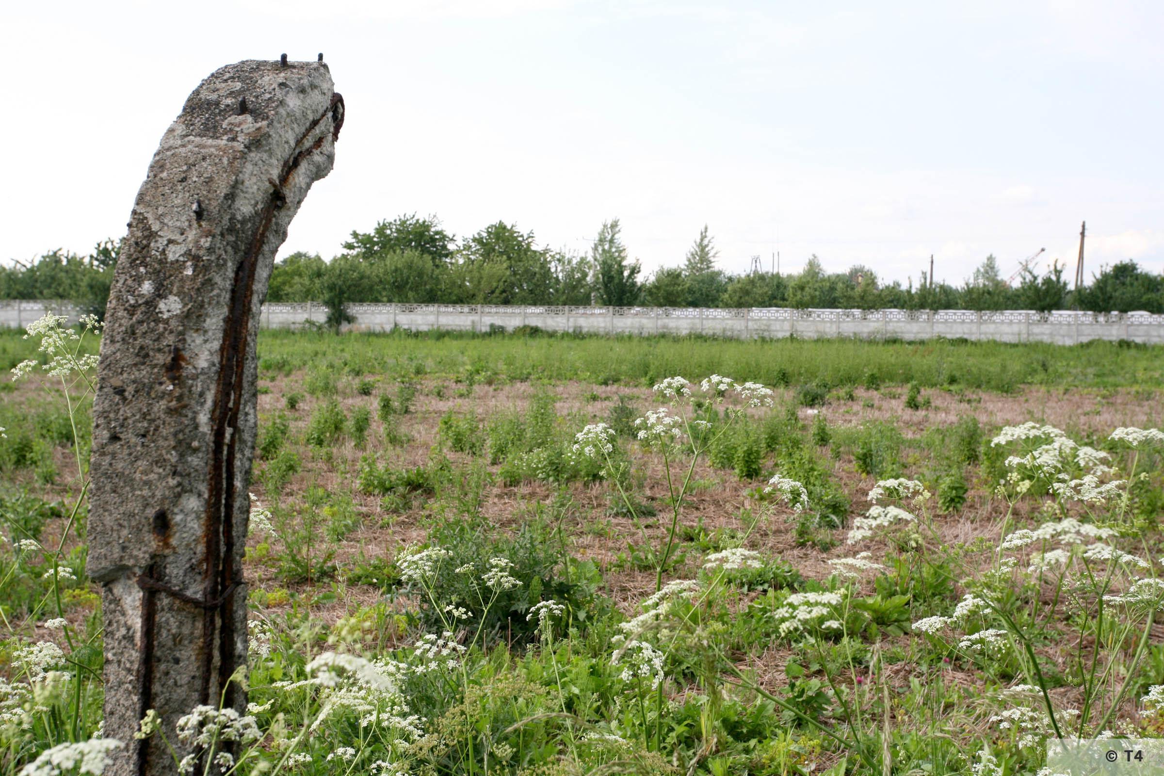 Fence posts surrounding field in Rajsko. 2006 T4 5041