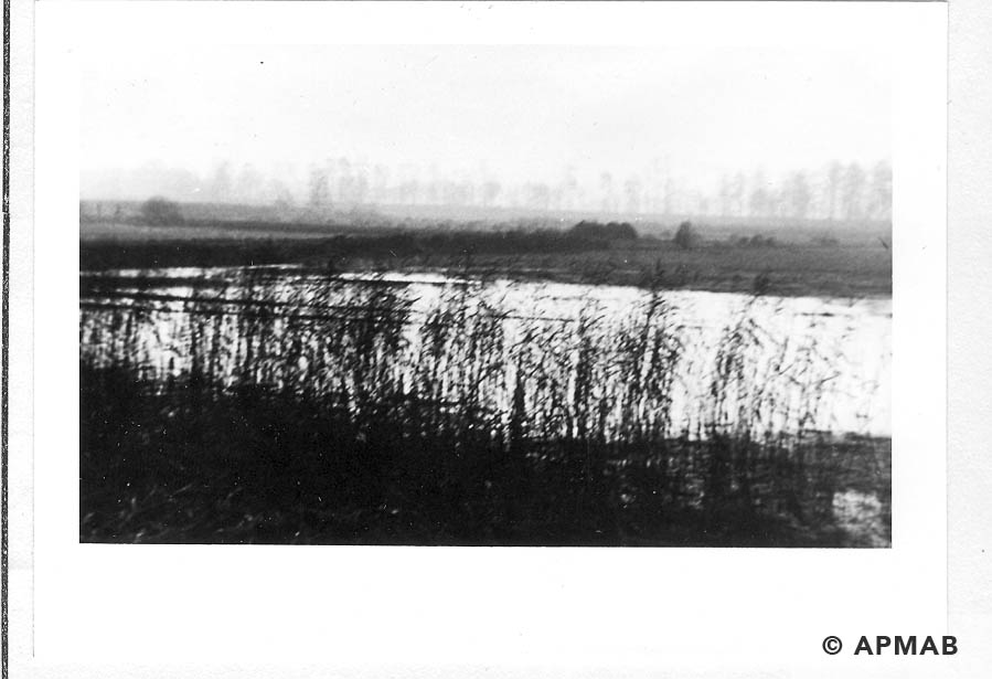 Fish ponds where female prisoners from Harmense worked. 1965 1966 APMAB 21639 1