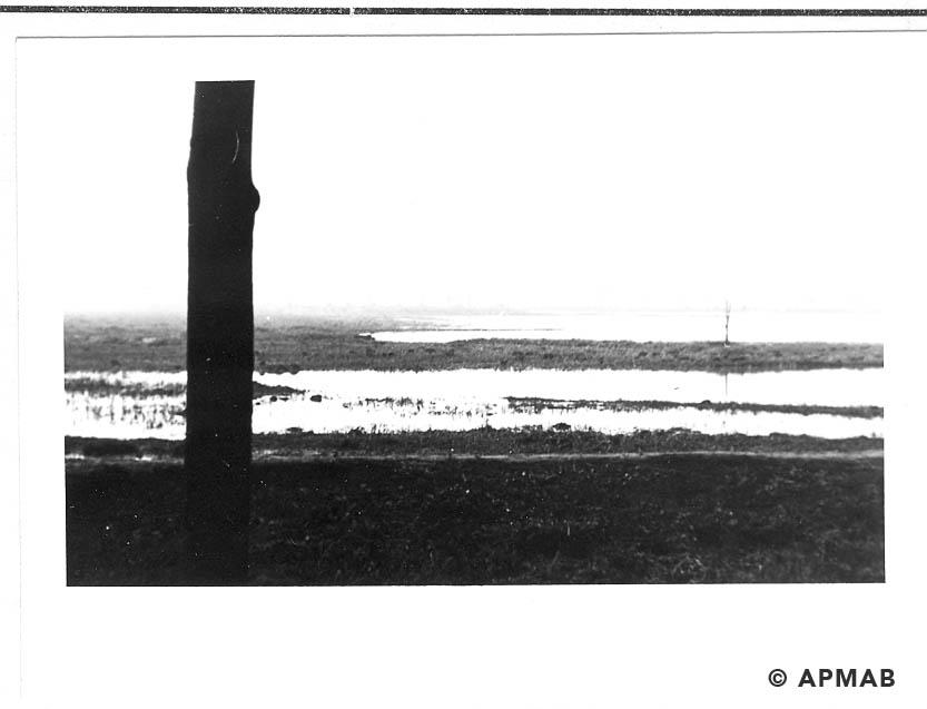 Fish ponds where female prisoners worked.1965 1966 APMAB 21639 4