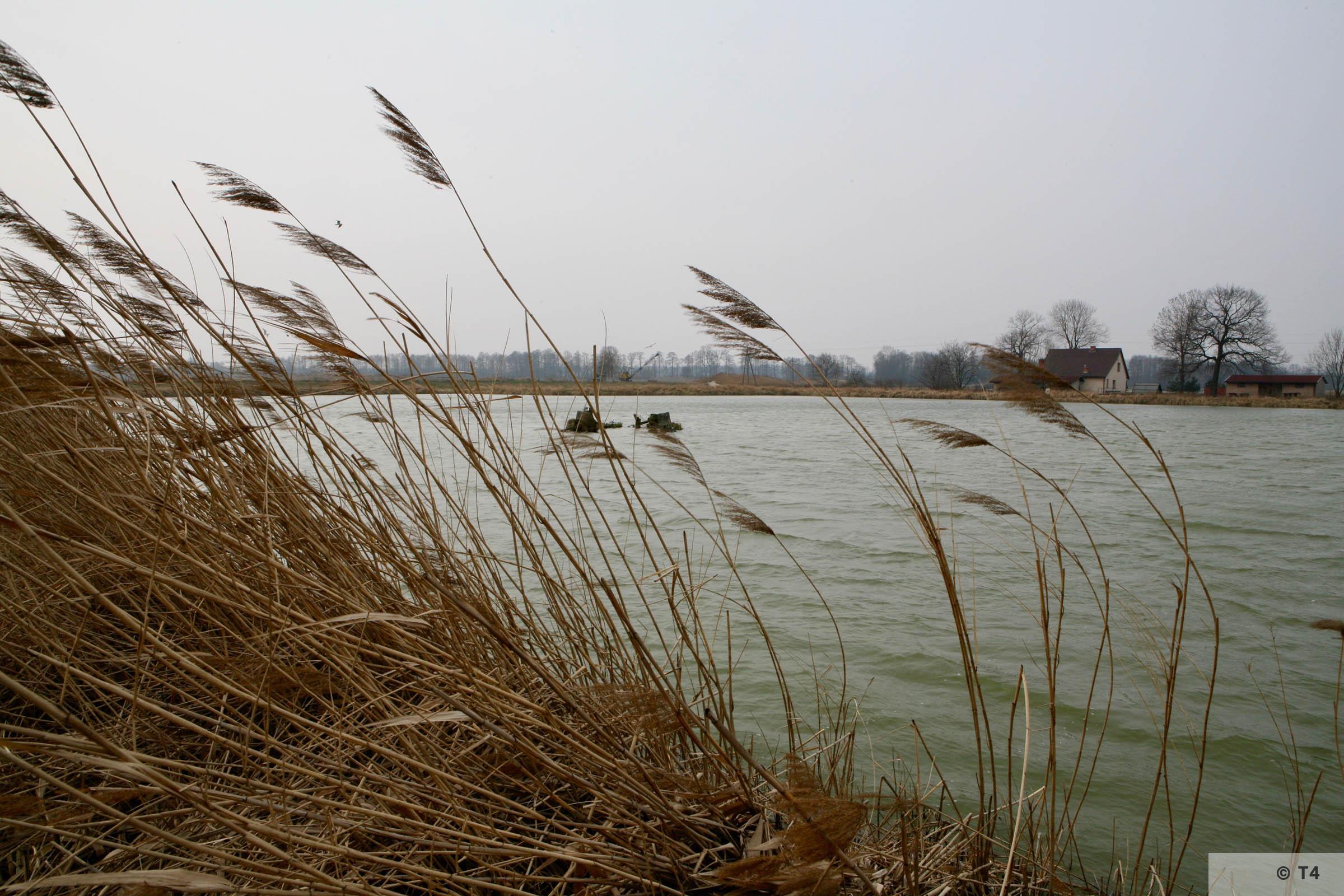 Fishponds where Fischerei Kommando worked. 2007 T4 3627