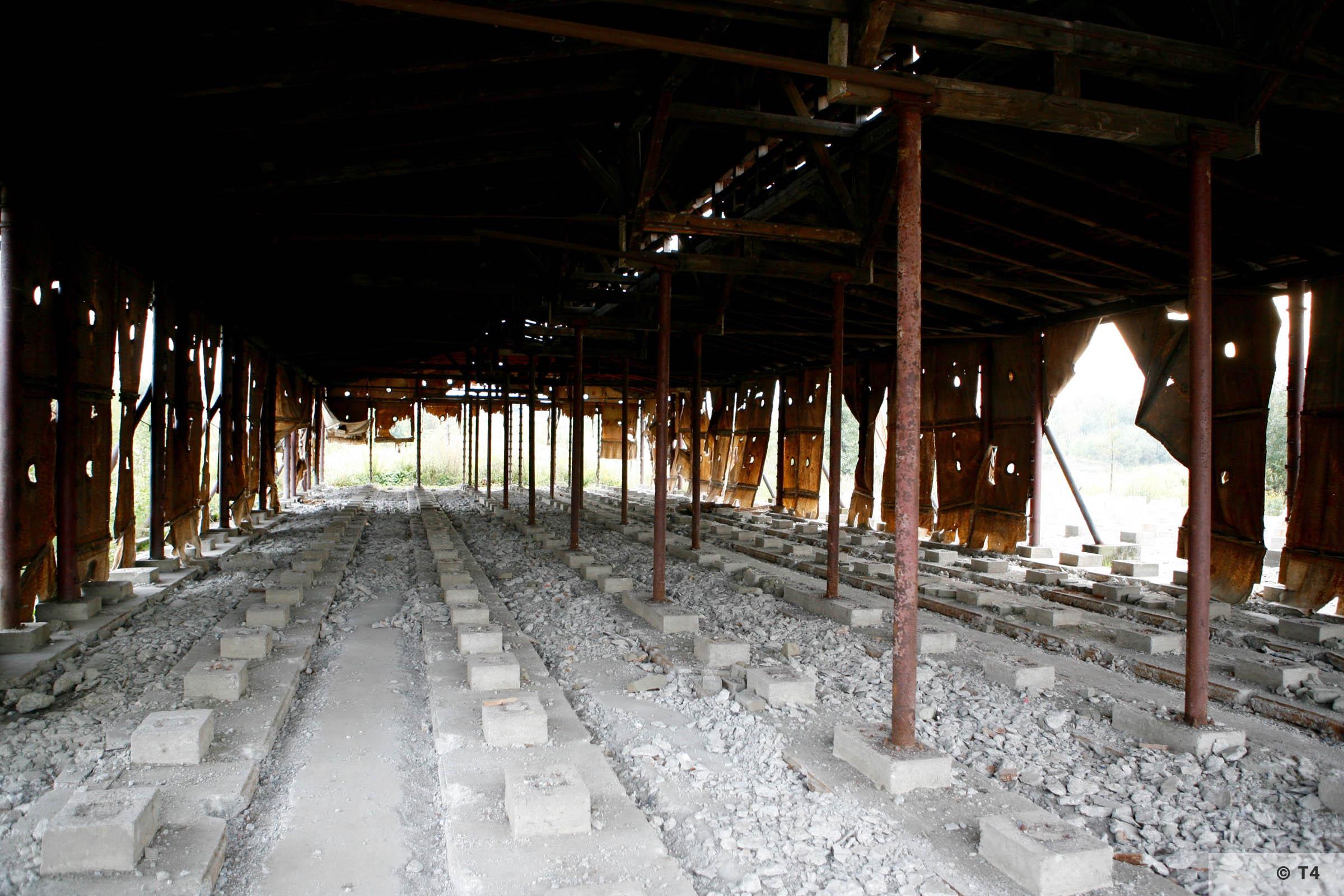 Former Hercer brickyard 2006 T4 3617