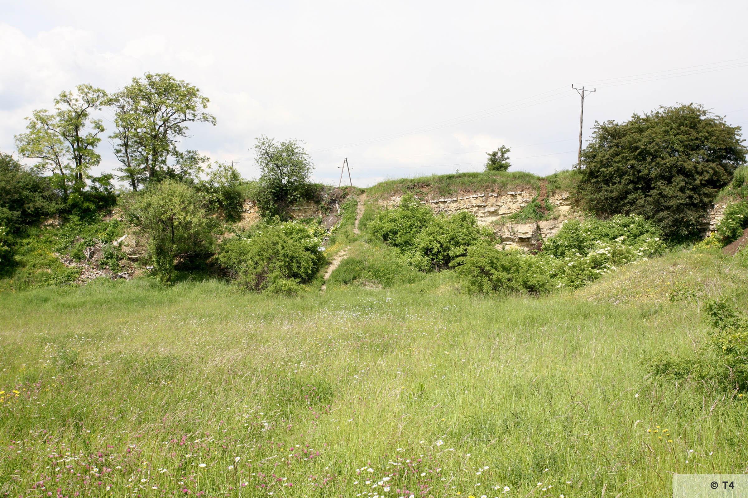Former quarry. 2006 T4 4936