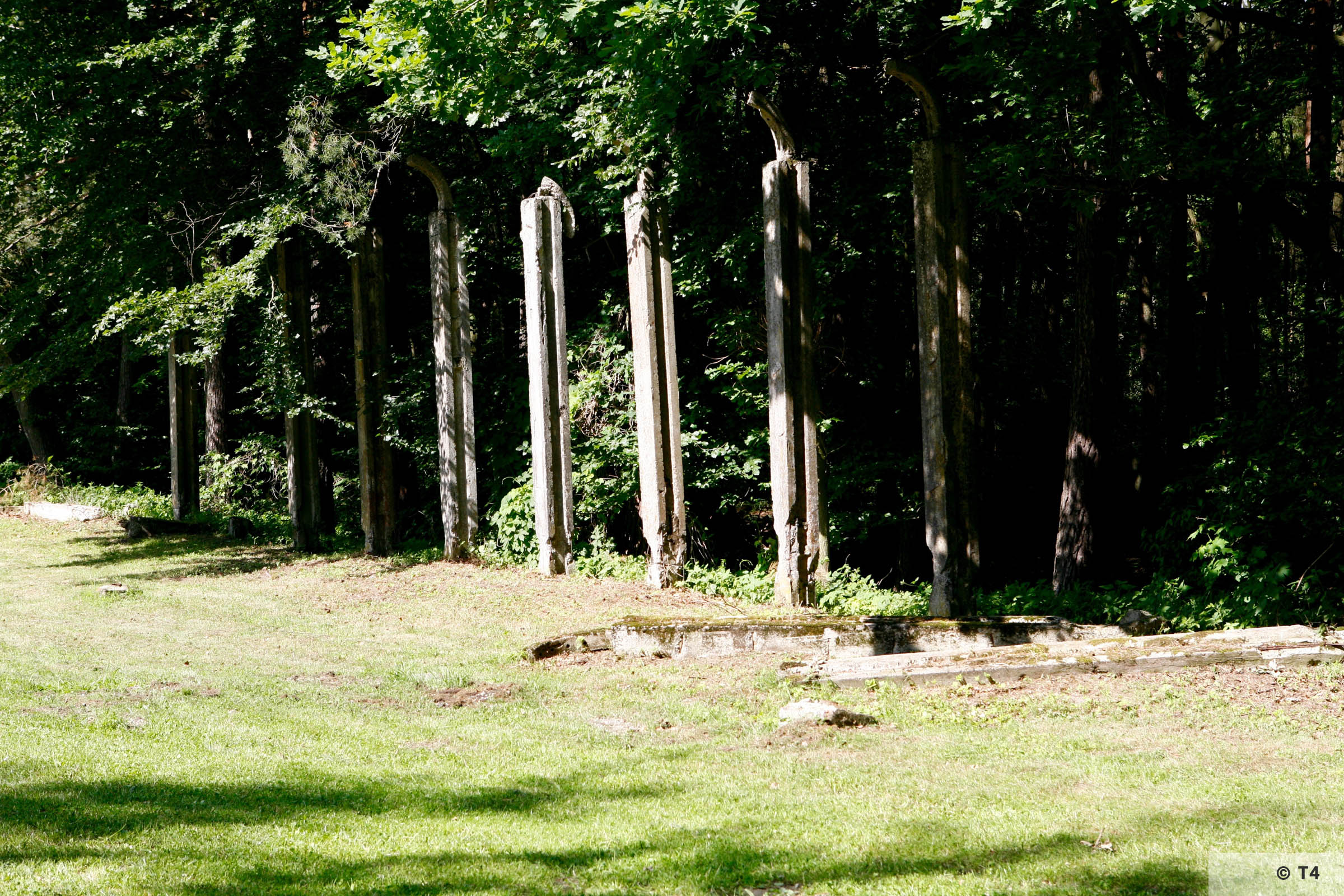 Former sub camp fence posts. 2006 T4 5493