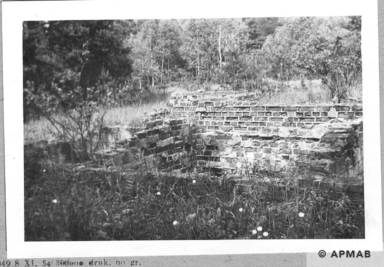 Foundations and ruins of walls of unknown camp's building. 1965 APMAB 8781