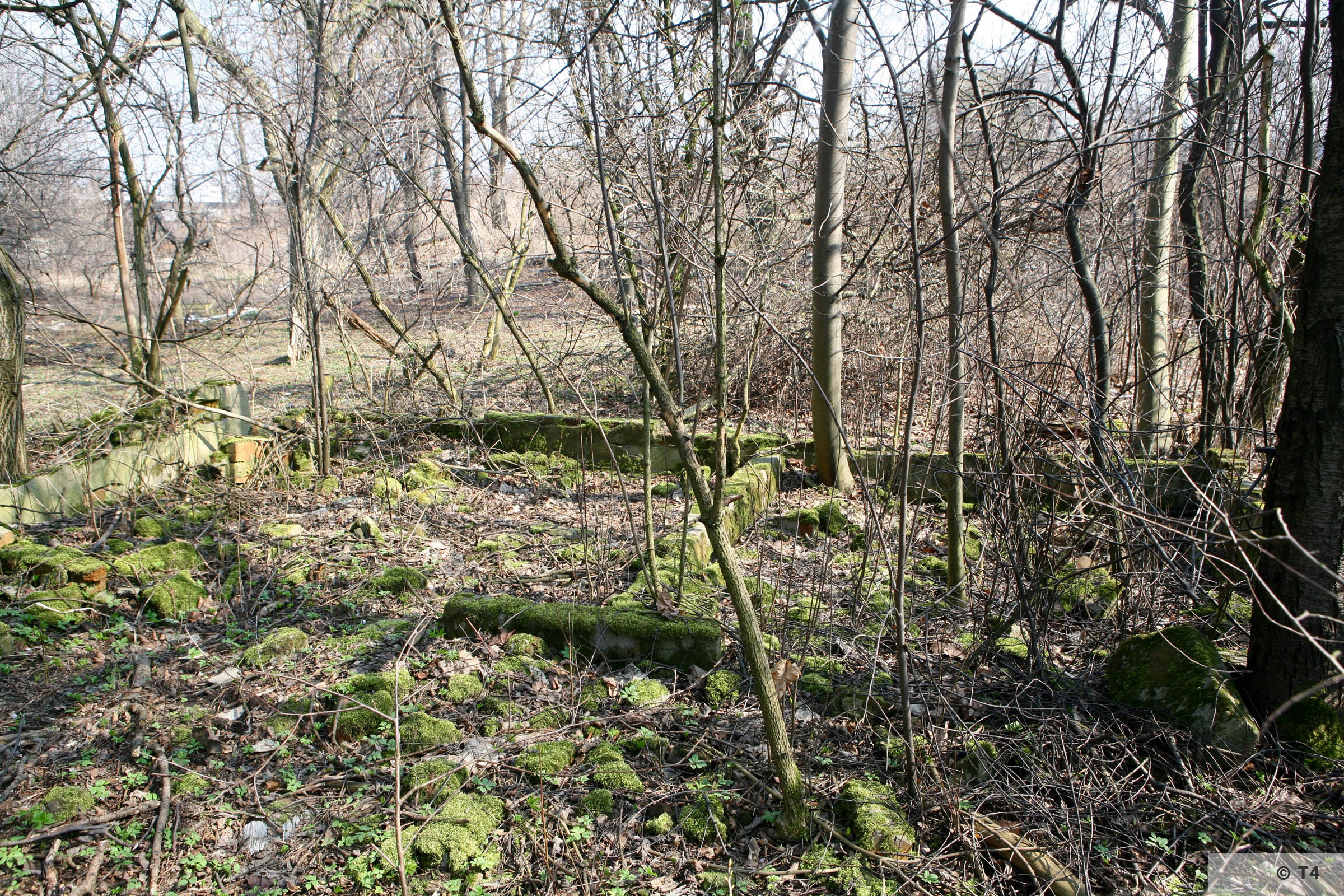 Foundations of barracks on the area of the former sub camp. 2007 T4 6756