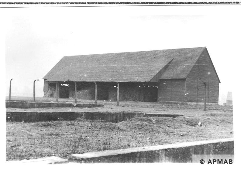 Foundations of farm barracks, posts of fence and barn at the background in 1955. APMAB 22274 1