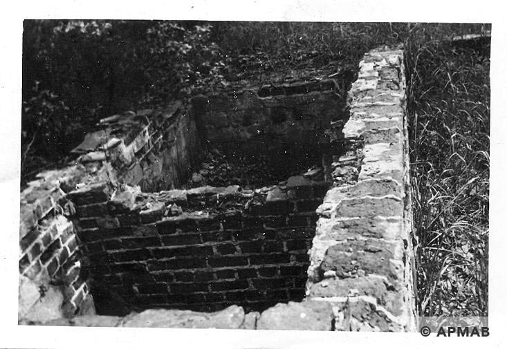Foundations of unidentified camp building. 1965 APMAB 8782