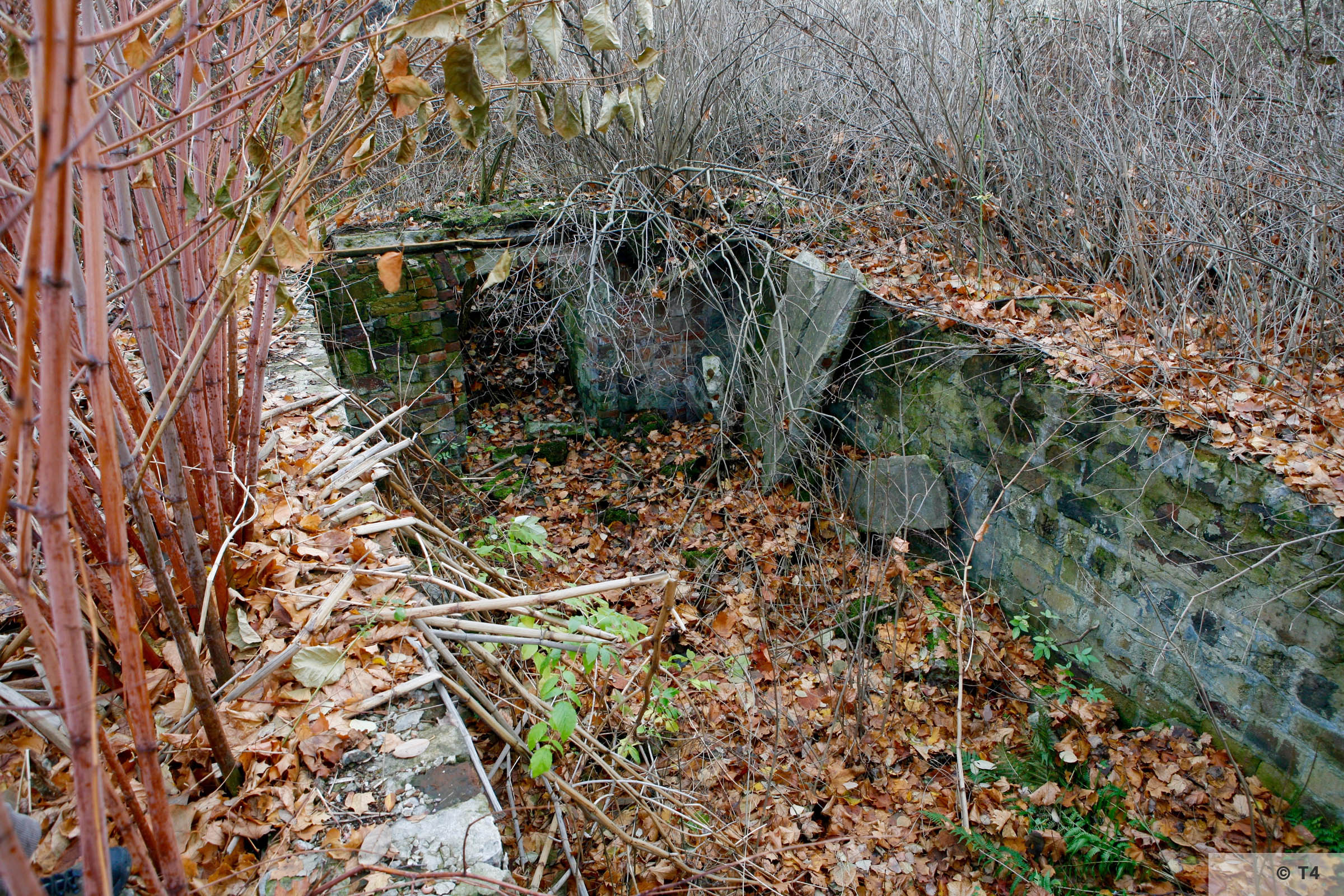 Foundations on the area of the former sub camp and labour camp. 2006 T4 4790