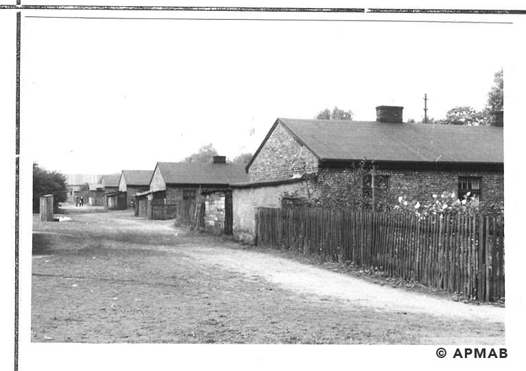 Four barracks close to the road Halemba Klodnica. 1967 APMAB 11216