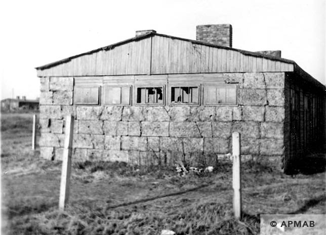 Fragment of barrack where prisoners lived. 1967 APMAB 10628