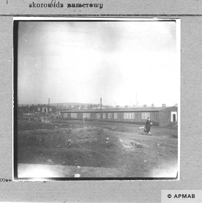 Fragment of camp area and barracks built after the war. 1959 APMAB 4395