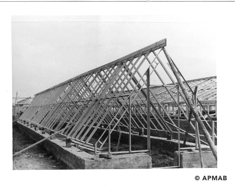 Fragment of greenhouse structure in a horticultural farm. 1941-44 APMAB 20995 169