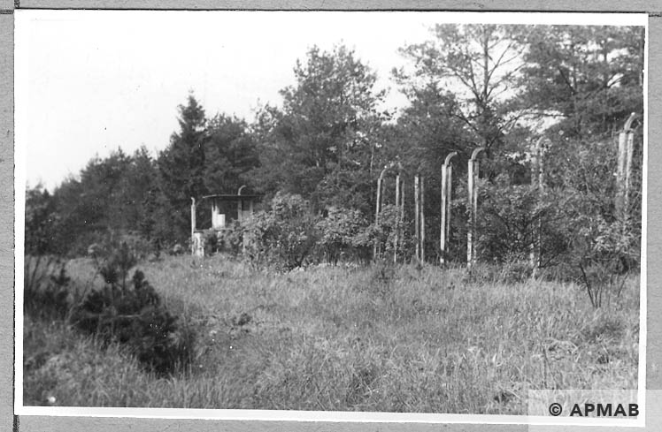 Fragments of fence and watchtower. 1965 APMAB 8785