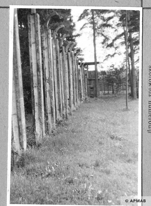 Fragments of the fence from the East and guardtower. 1965 APMAB 8774