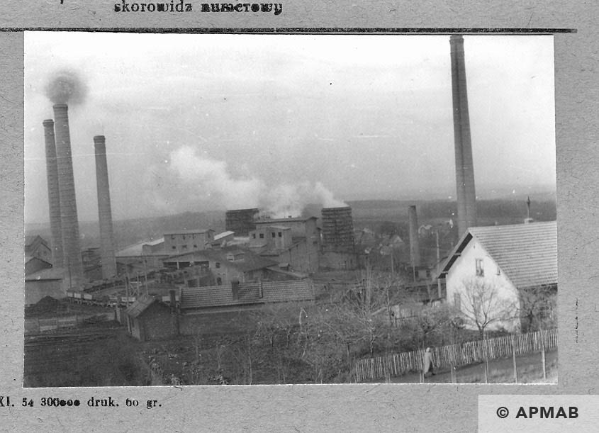 General View of the cement factory Goleszow. 1959 APMAB 4374