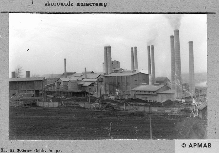 General View of the cement factory in Goleszow. 1959 APMAB 4373