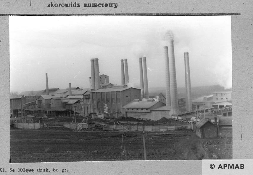 General view of the cement factory in Goleszow. 1959 APMAB 4703
