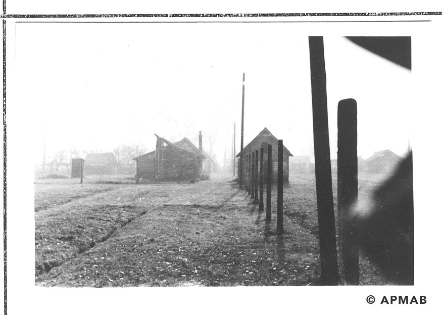 Hen houses and fence posts. 1955 APMAB 22273 8