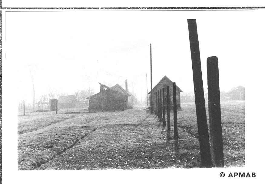Hen houses and fence posts. 1955 APMAB 22273 9