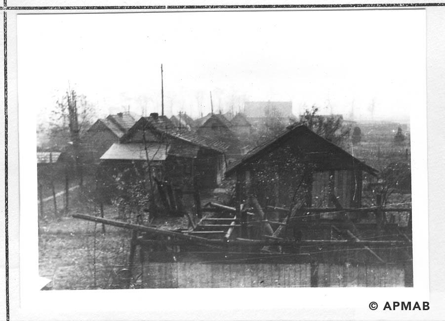Hen houses. 1955 APMAB 22273 4