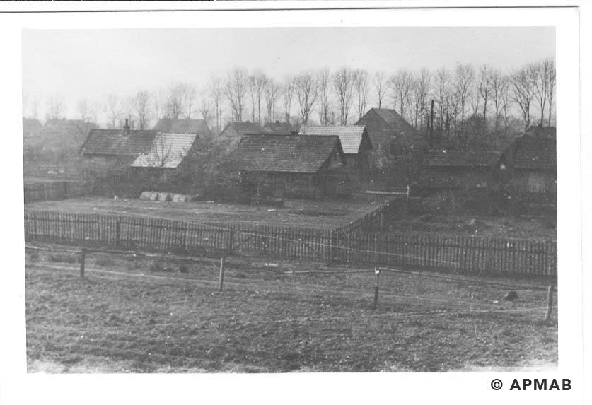Hen houses. 1955 APMAB 22273 5
