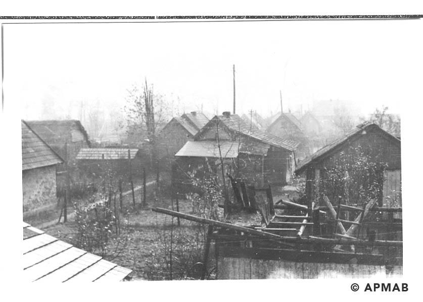 Hen houses. 1955 APMAB 22273 7