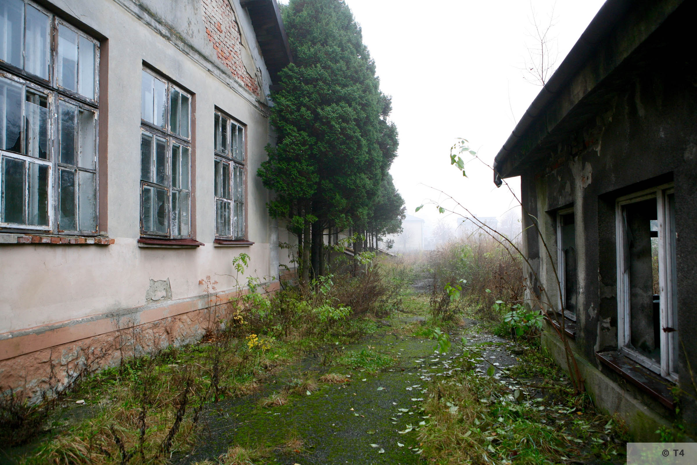 Hygiene Institut der Waffen SS laboratory and boiler building in Rajsko. 2007 T4 2875