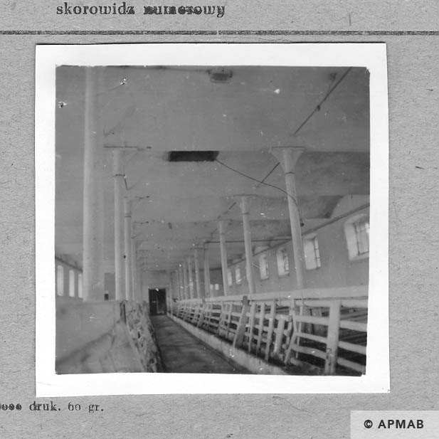 Interior of the barrack for the prisoners. 1959 APMAB 4363