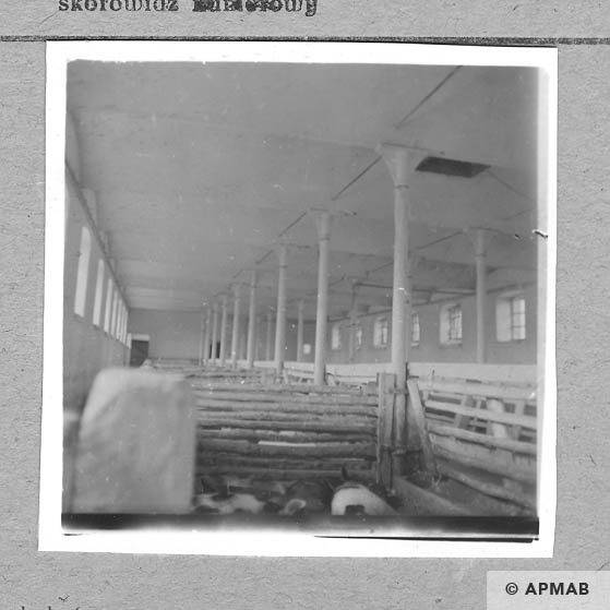 Interior of the barrack for the prisoners. 1959 APMAB 4364