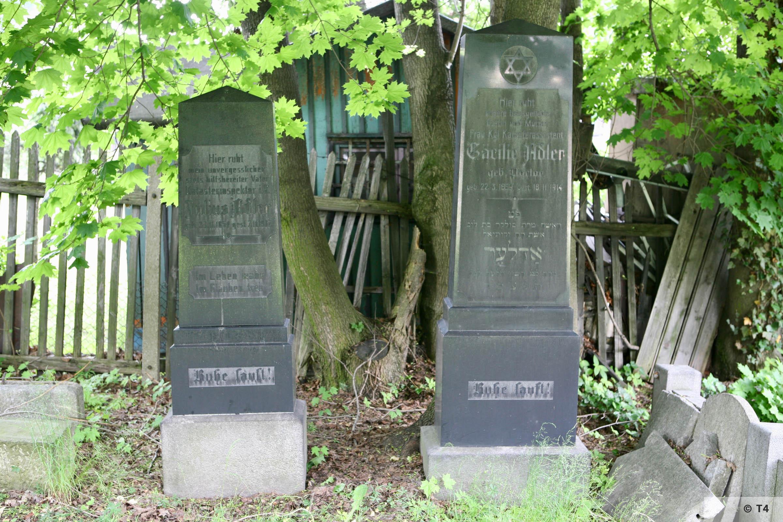 Jewish cemetery Prundik. 2006 T4 5251