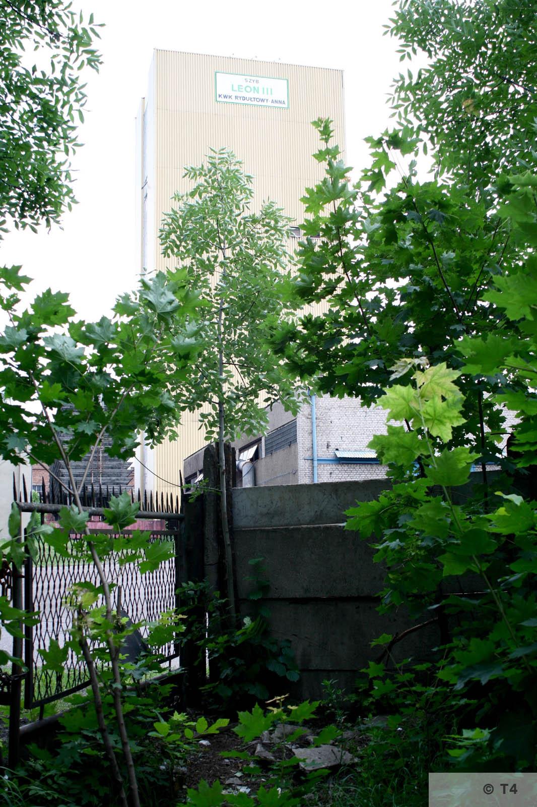 Leon III shaft. 2007 T4 9166