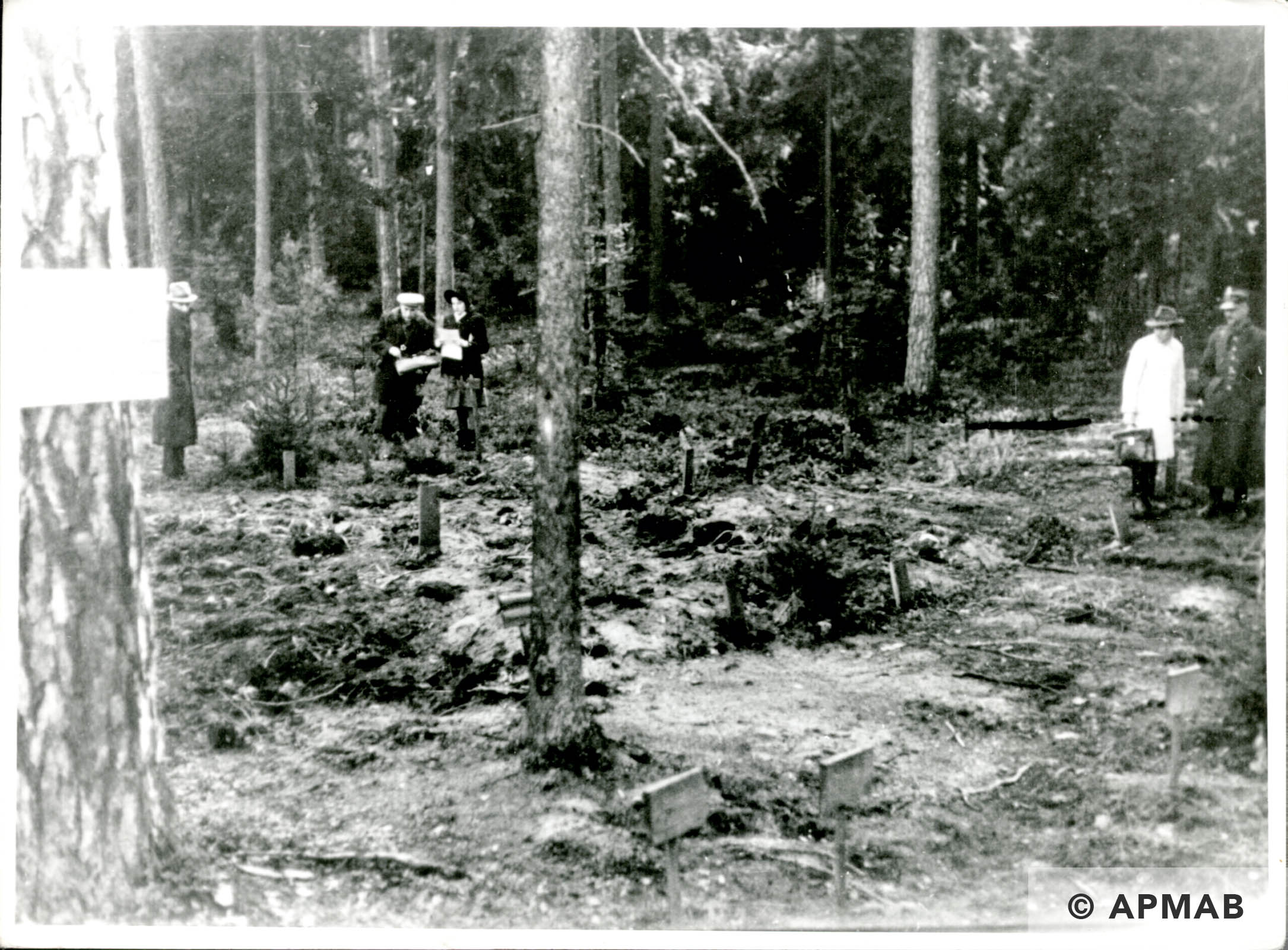 Mass grave. Probably 1946 APMAB 6297