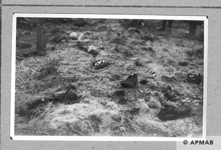 Mass graves. 1946 APMAB 10761