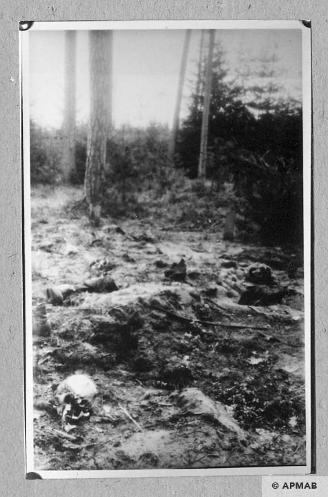 Mass graves. 1946 APMAB 10762