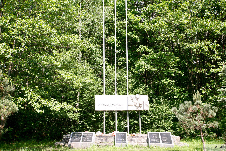 Memorial 2006 T4 4938