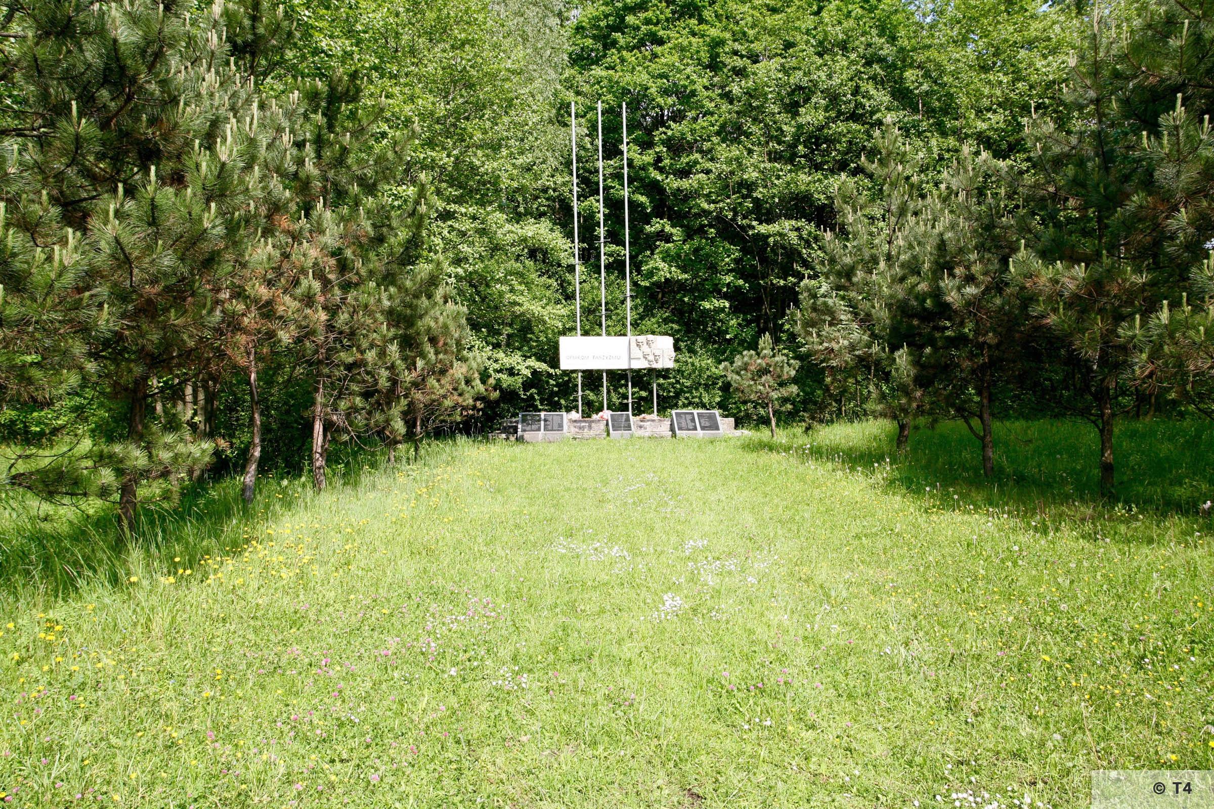 Memorial 2006 T4 4943
