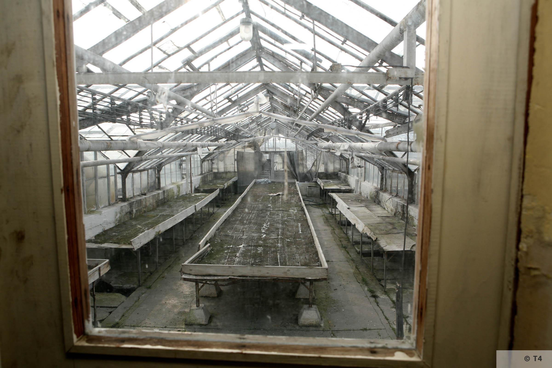 New Greenhouses. 2007 T4 3418