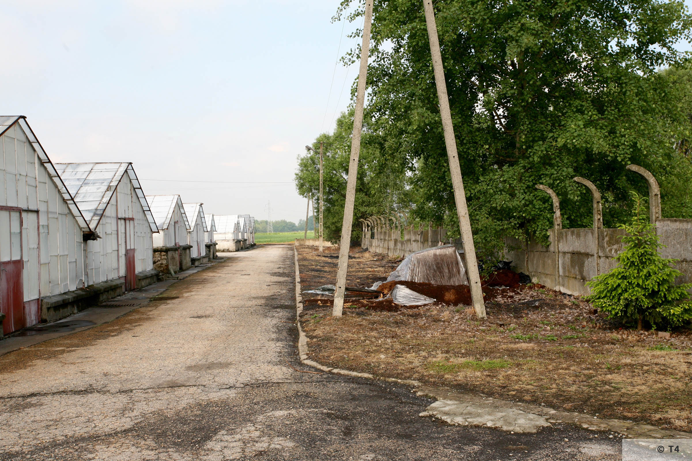 New greenhouses and fence posts. 2006 T4 5164