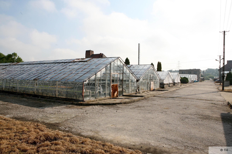 New greenhouses. 2006 T4 5109