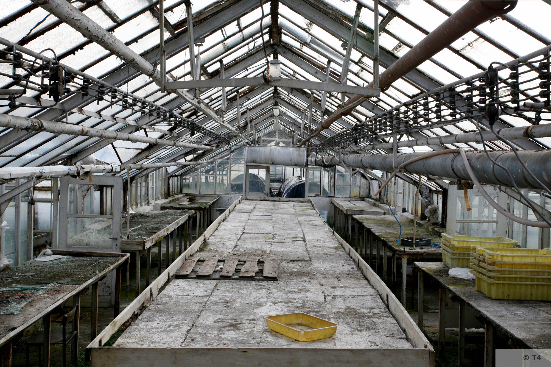 New greenhouses. 2006 T4 5126