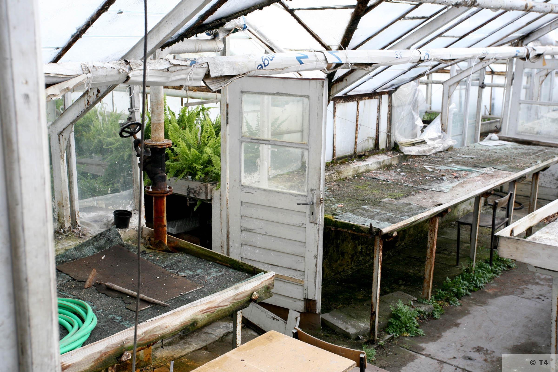 New greenhouses. 2006 T4 5127