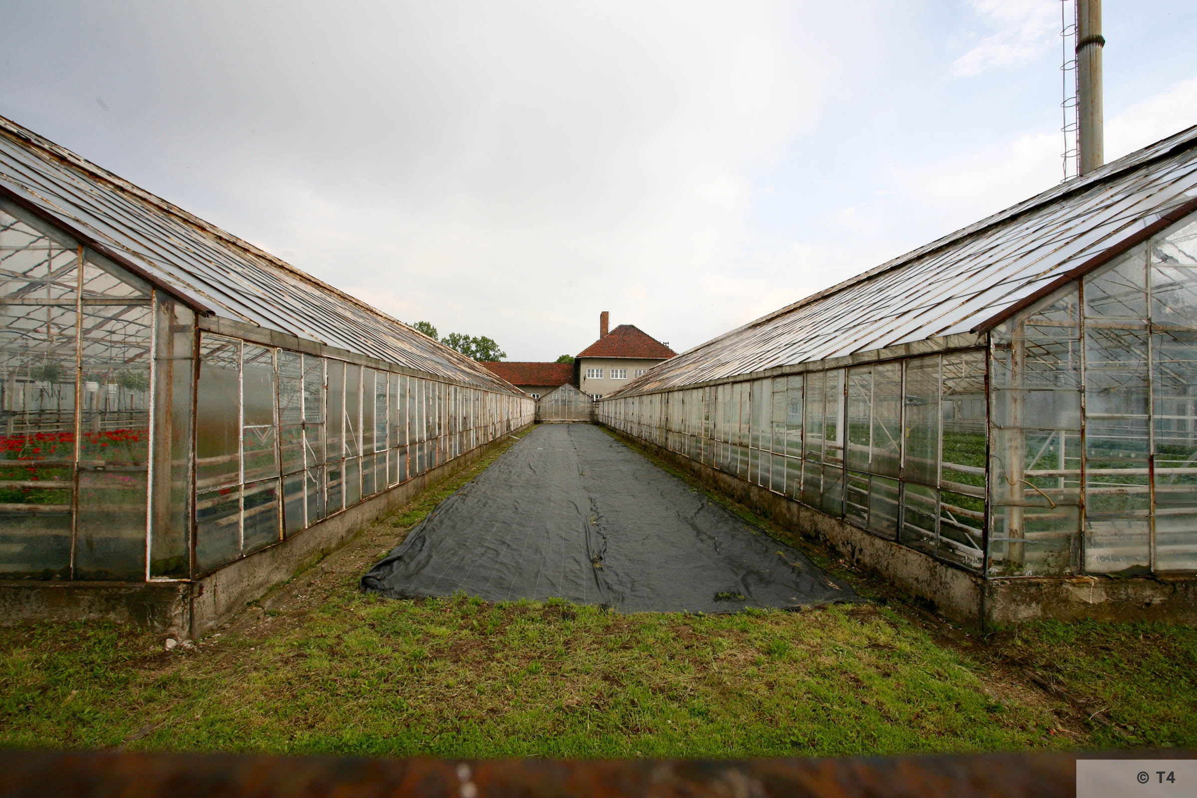 New greenhouses. Horticultural laboratory in the background. 2006 T4 5051