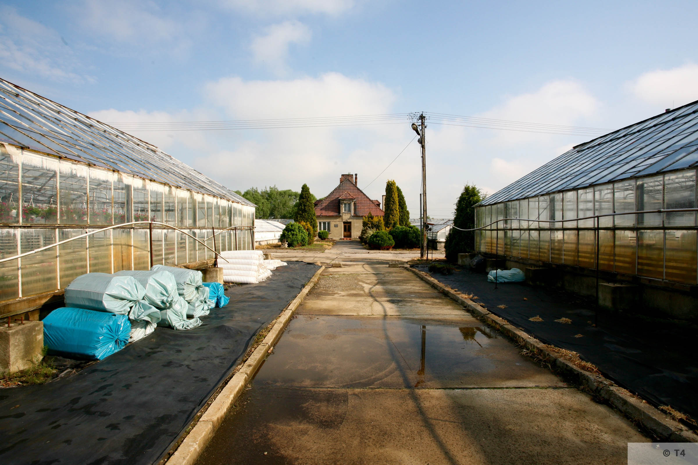 New greenhouses. Horticultural laboratory in the background. 2006 T4 5104